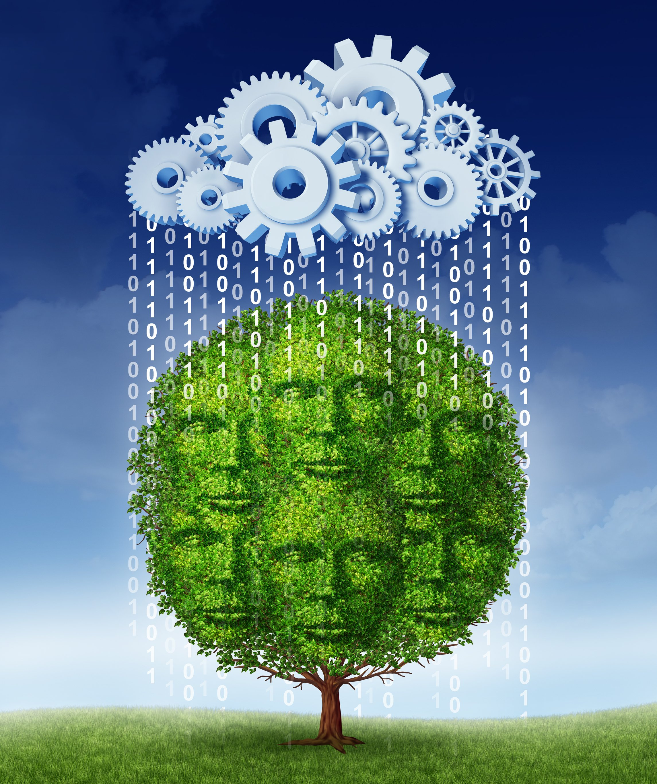 Social media growth technology concept with a tree shaped as a group of human heads growing helped by a virtual server cloud made of gears and cogs raining down digital code as a metaphor for internet marketing strategies.